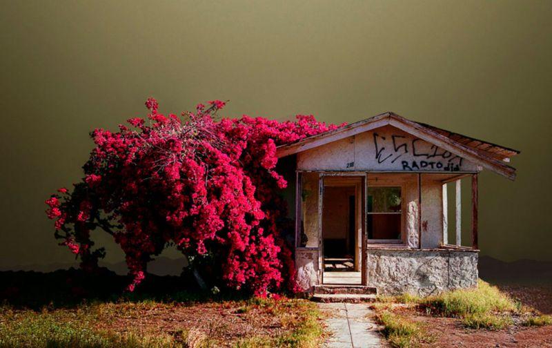 HOTphoto: Ed Freeman - Ed-Freeman-Abandoned-house