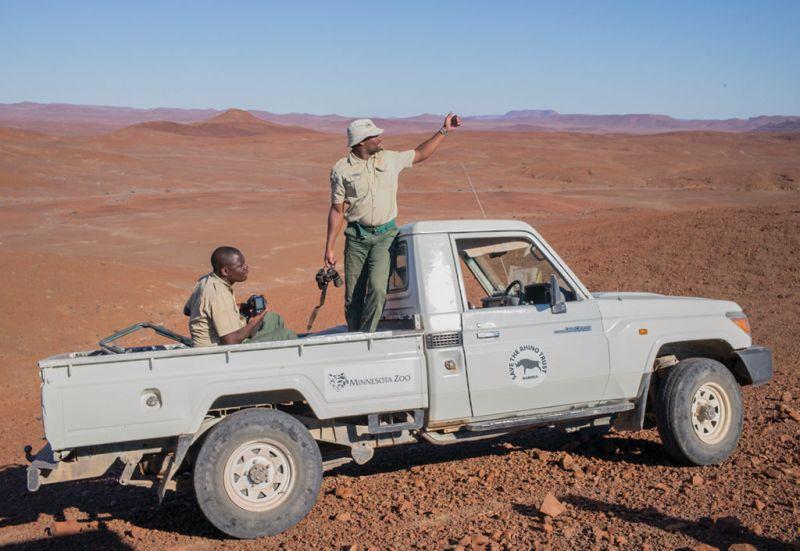 El rinoceronte del desierto - wild_rinoceronte_safari