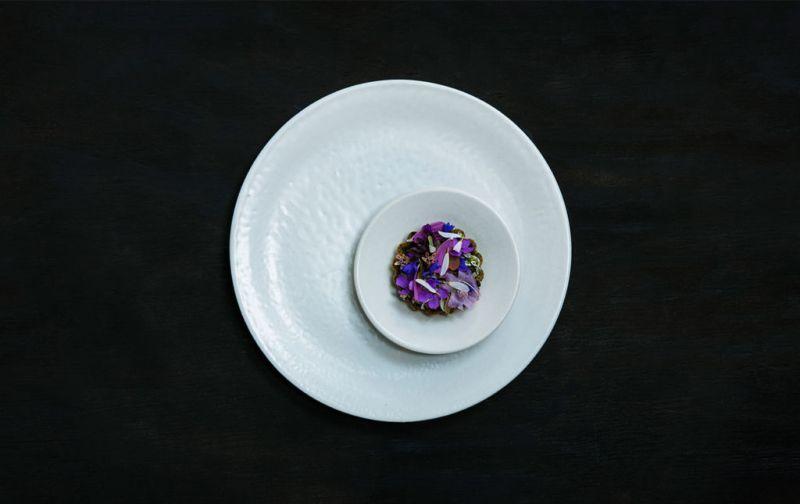 Aska; Suecia y Nueva York en reunión - Squi-tart