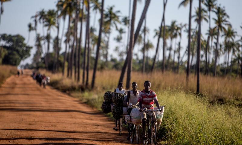 Locaciones exóticas de películas nominadas al Óscar - mozambique