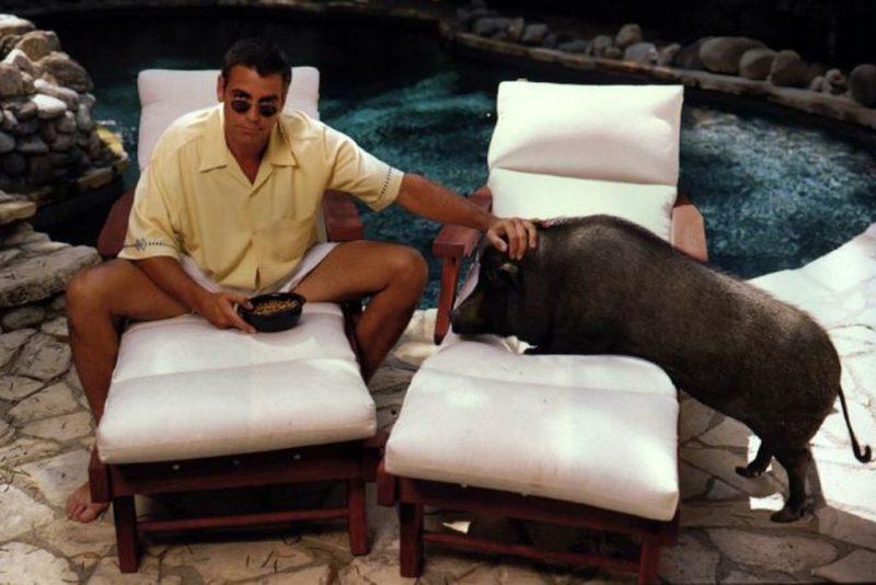 Datos curiosos sobre George Clooney - 7-mascota-george-clooney