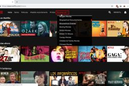 Better Browse, un add-on para encontrar contenidos escondidos en Netflix
