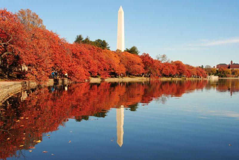 Guía para visitar Washington D. C. - guia-washington-1
