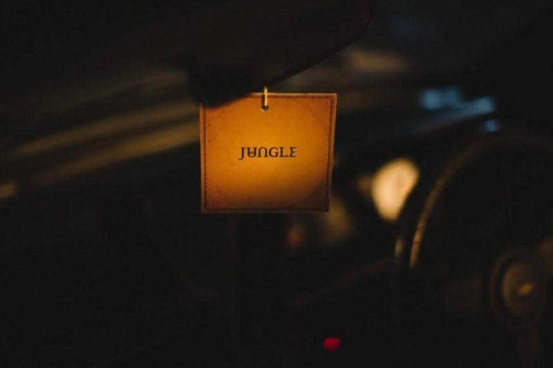 Jungle se presenta en la Ciudad de México - jungle-3