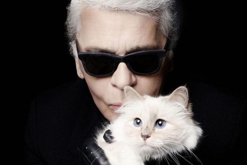 10 datos que no sabías sobre Karl Lagerfeld - karllagerfeld_choupette