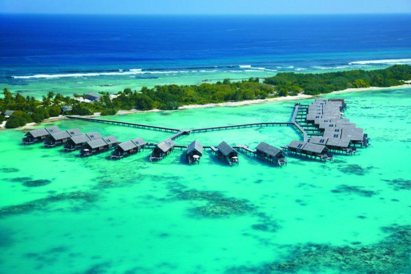 Reef Care, el plan de recuperación de corales heridos - maldivas3