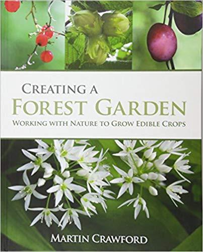 Libros para celebrar la llegada de la primavera - libros-para-celebrar-la-llegada-de-la-primavera-8