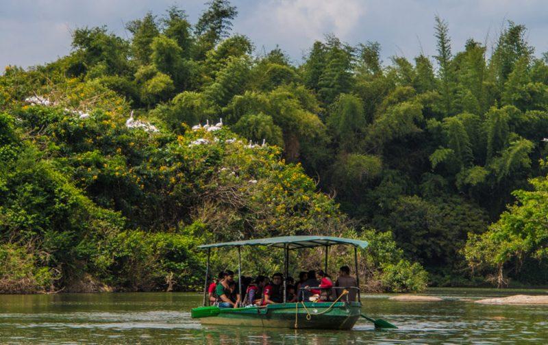 Karnataka: santuarios naturales, delirios de grandeza y contrastes urbanos - agua-lancha-selva-karnataka
