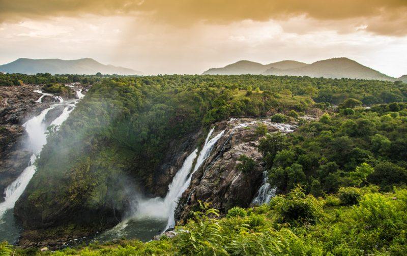 Karnataka: santuarios naturales, delirios de grandeza y contrastes urbanos - karnataka-arboles-casacadas-naturaleza