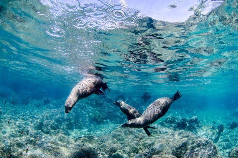 Playas de México para visitar en tus próximas vacaciones - playas-mexico4