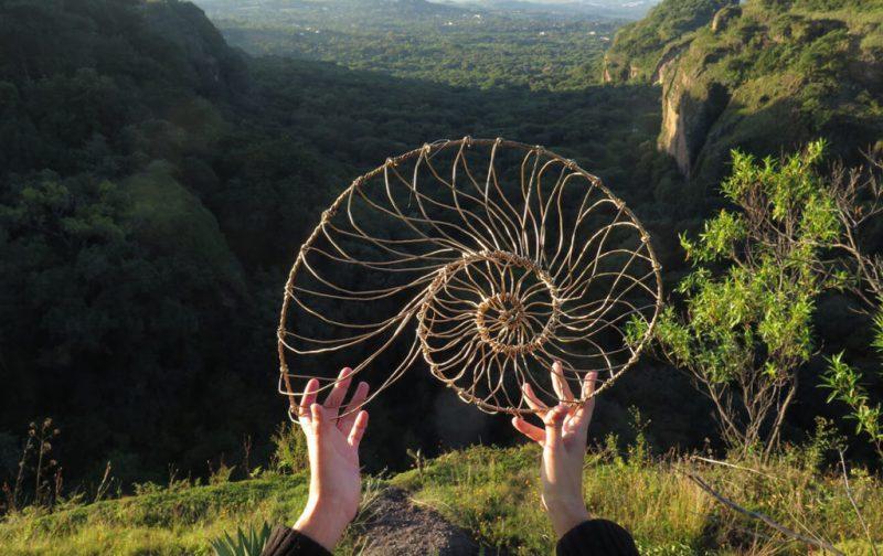 Máscaras de Alambre, un accidente creativo - caracol-alambre-naturaleza-vista