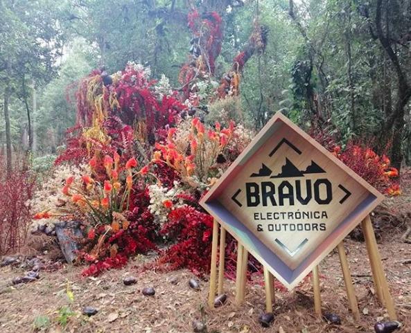 Recuerdos del Festival Bravo 2019 - festival-bravo-1