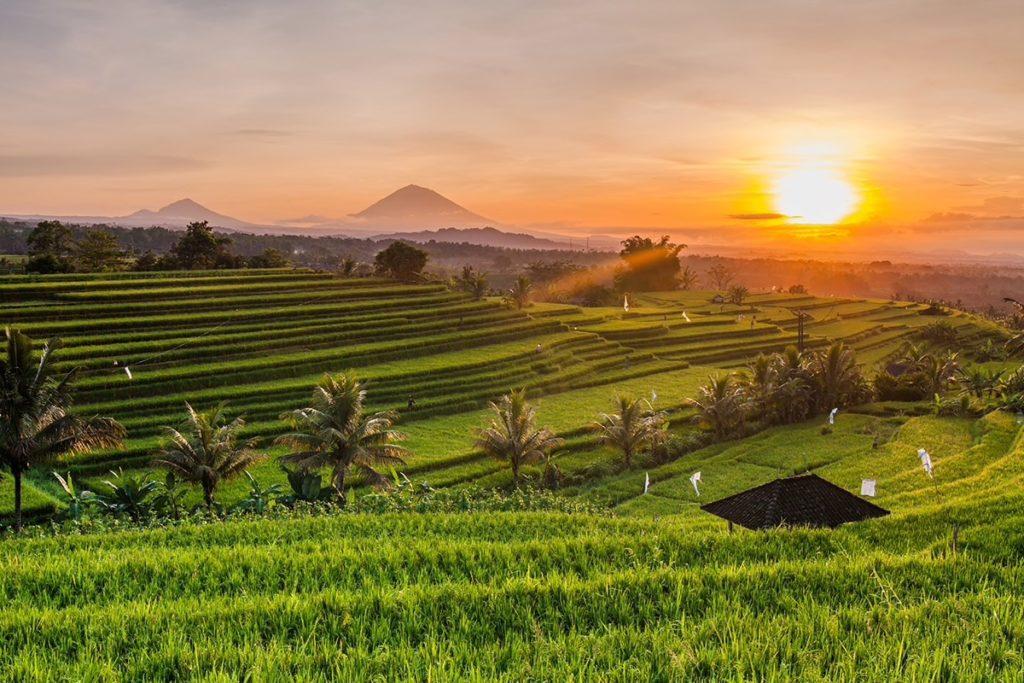 Guía para visitar Ubud, Bali - GuiaUbud_PORTADA