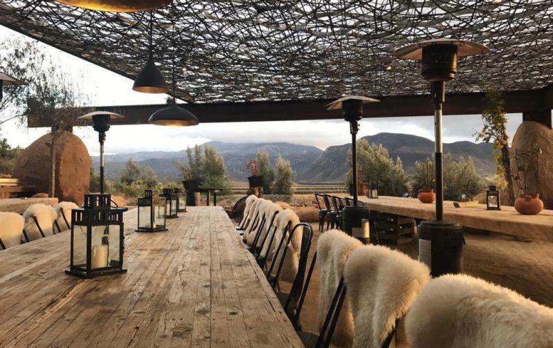 Bruma Vinícola y Fauna, un paraíso mexicano para los amantes del vino - restaurante-fauna-decoracion-vincc83edo