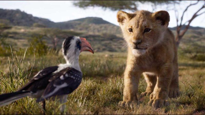Lo que necesitas saber sobre la nueva película de El rey león - factsreyleon_simbaypajaro