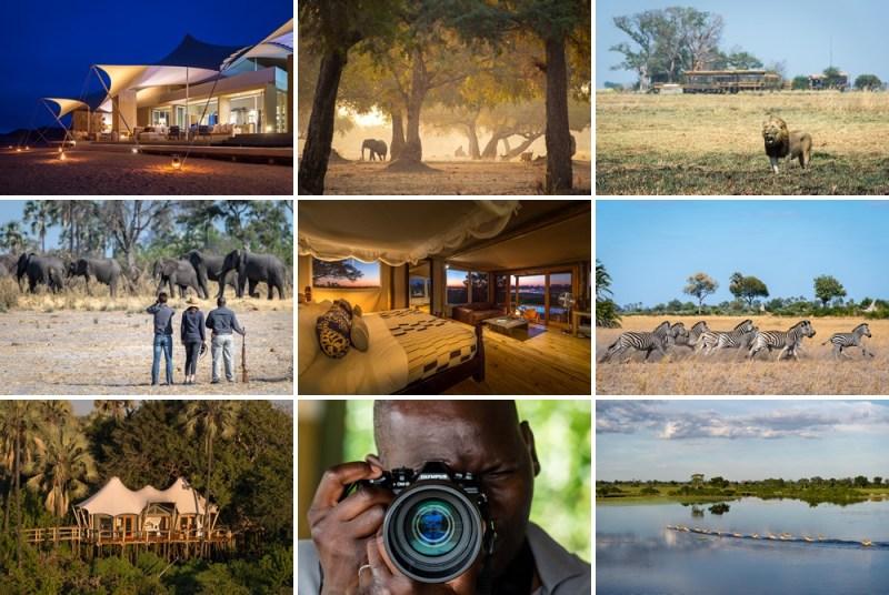 Wilderness Safaris Photographic Competition - foto-3-premio