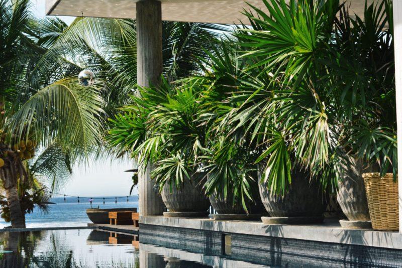 Lo Sereno Casa de Playa, un paraíso en Troncones - lo-sereno-1