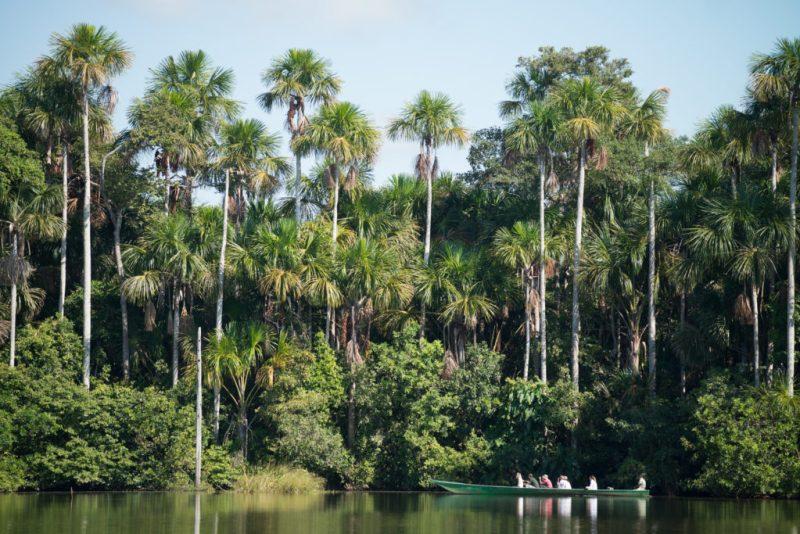 Cuatro destinos para disfrutar de la naturaleza - amazonia4-inkaterra
