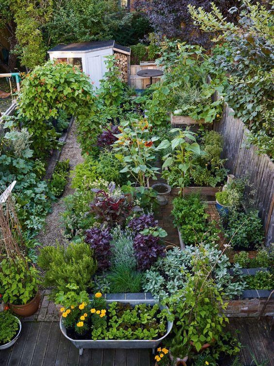 101: cómo crear tu propio huerto urbano - 101-como-crear-tu-propio-huerto-urbano-4