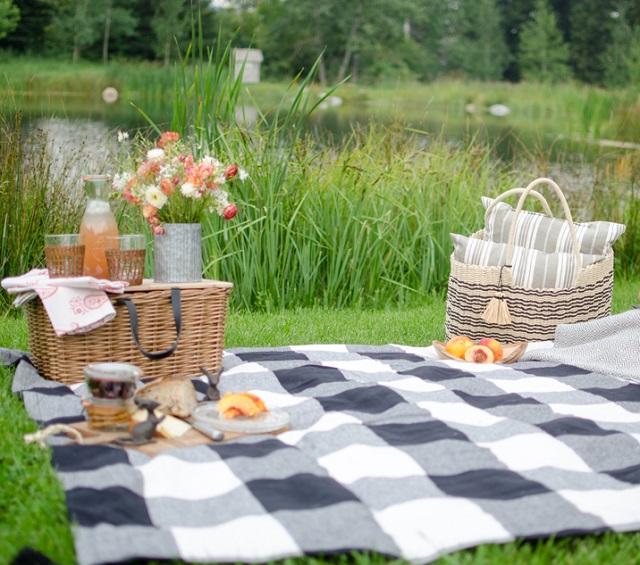 Festeja El Día Del Niño En Casa Con Un Pícnic
