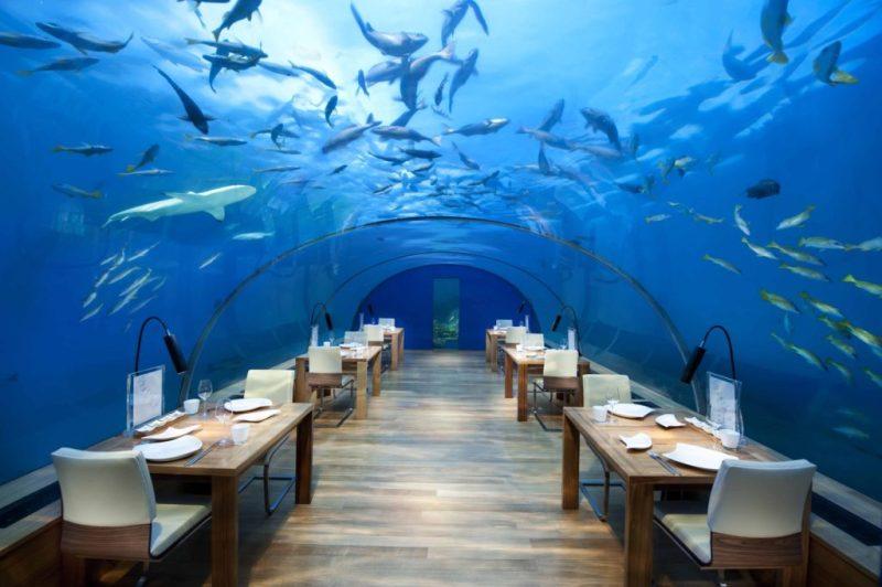 16 de los restaurantes más instagrameables del mundo - ithaa-underwater-restaurant-islas-maldivas
