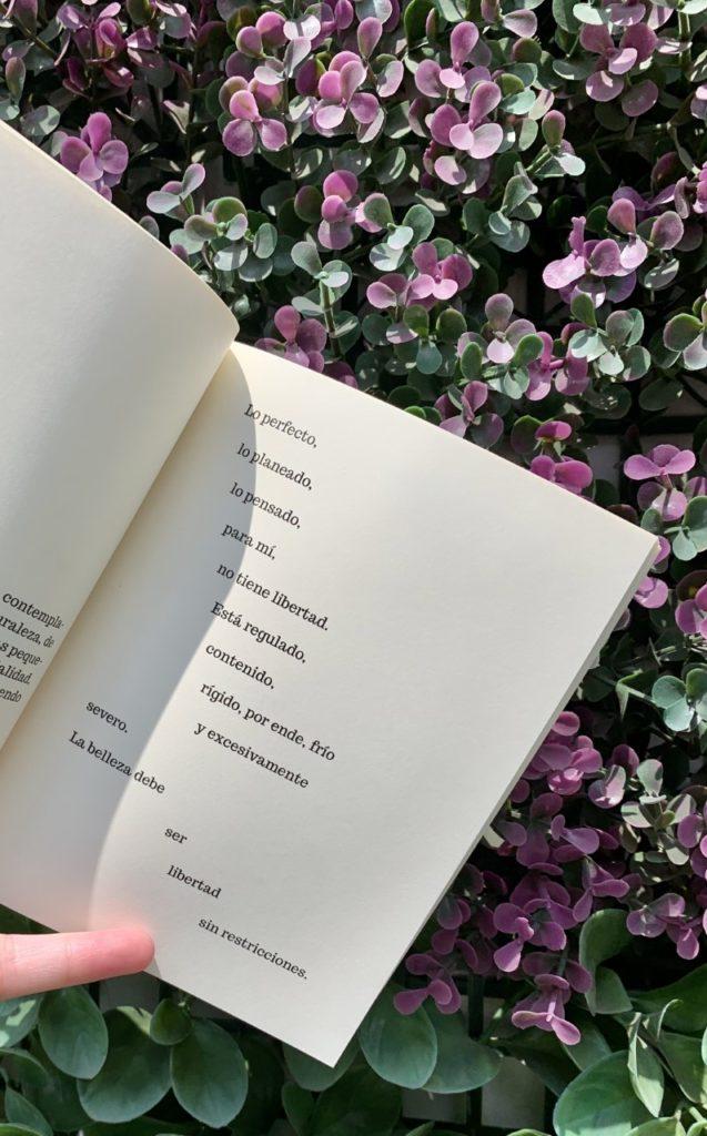 Bosco Sodi publica su primer libro: En cuarentena - bosco-sodi-nuevo-libro-3