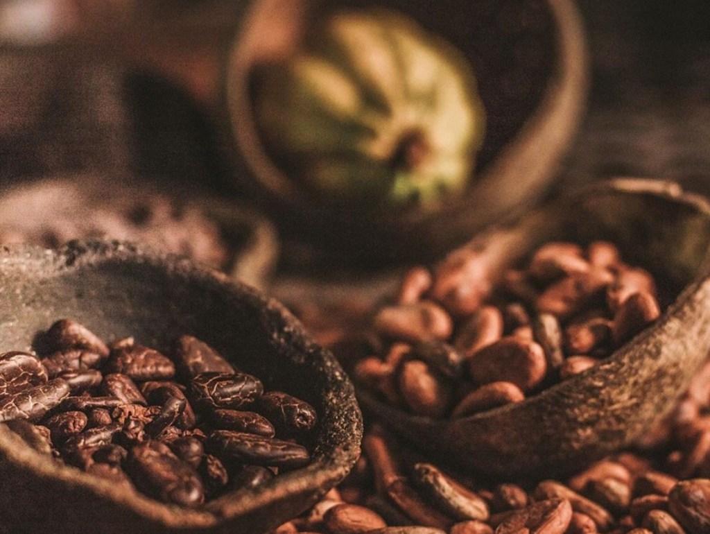 Culto Cacao, el imperdible chocolate orgánico mexicano - Portada Culto Cacao el imperdible chocolate orgánico que no puedes dejar de probar chocolate foodie gourmet food Instagram amazon tiktok amazon Disney netflix google tiktok Instagram cacao comida recetas