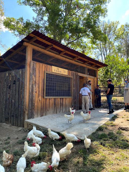 Vive una experiencia orgánica y natural con Aires de Campo en Pipiol - img_4012