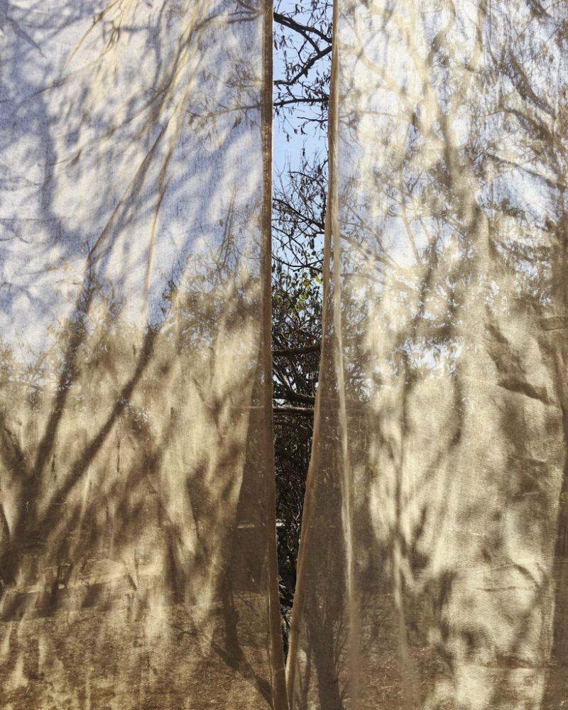 Un Abrazo de Raíz: Luvia Lazo a través de la fotografía te sumerge a la cultura mexicana de la mano de Lincoln. - luvia_lazohacecalor-________7jpg