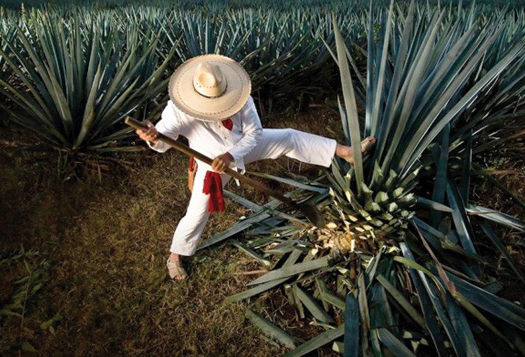 Herradura Ultra: el tequila de lujo contemporáneo