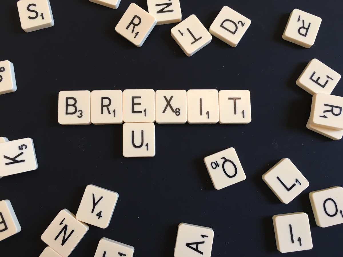 BREXIT: IN OR OUT
