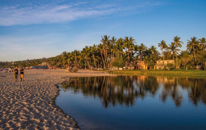Riviera Nayarit, horizontes de desarrollo costero - nayarit-mexico-palmtrees
