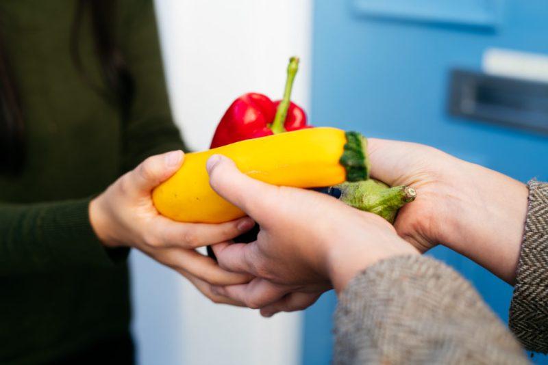 Olio una red global de intercambio de comida - hotbook-olio-una-red-global-de-intercambio-de-comida-1
