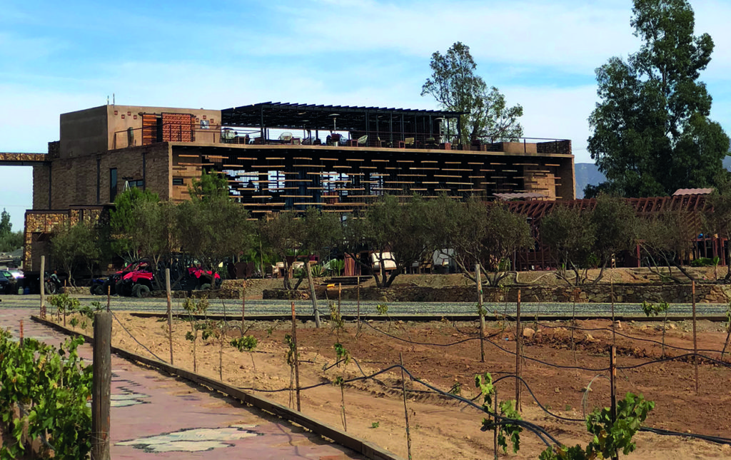 Agua de Vid. Hotel boutique en el Valle de Guadalupe