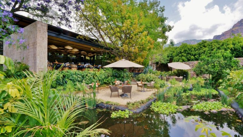 Amomoxtli, un oasis con impacto social - amomoxtli-oasis