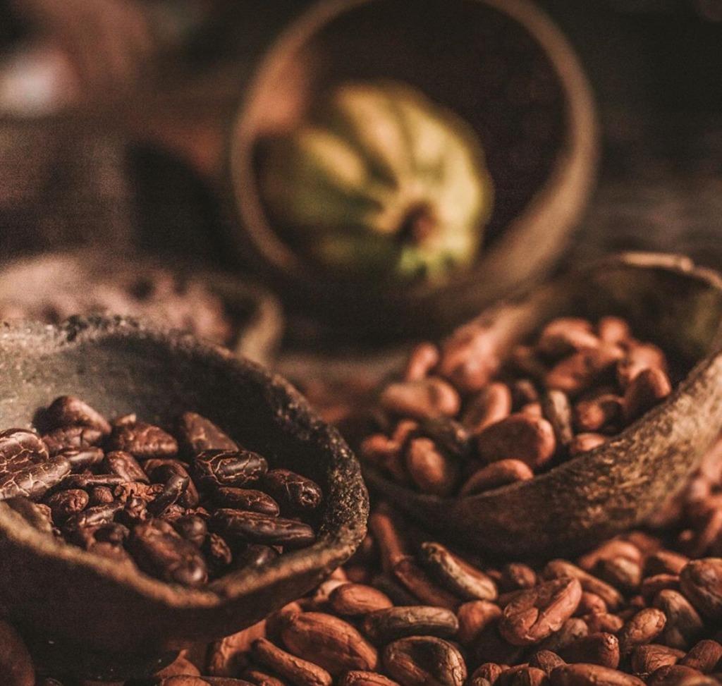 Culto Cacao, el imperdible chocolate orgánico mexicano
