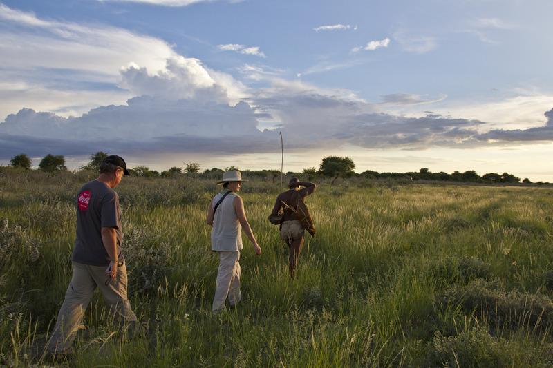 Traveler 101: cómo planear tu próximo viaje a África con Wilderness Safaris - k3h6764