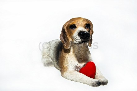 Liebe ist ... manchmal ein kleiner Hund