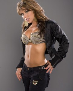 mickie_james_silver_and_gold_6j05Ygq.sized