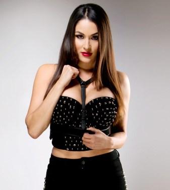 Pretty-Evil-Things-Nikki-Bella-wwe-divas-35489521-642-722