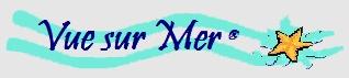 Logo-vue-gris copie