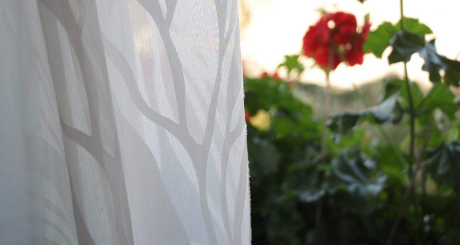 chambre vue sur jardin