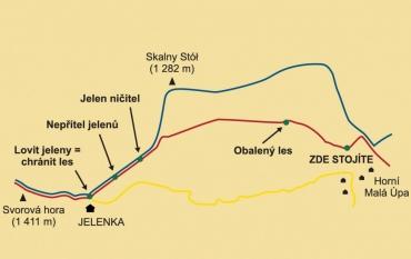 jelenka-stezka_370x233