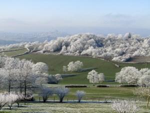Morvan Vézelay l'hiver