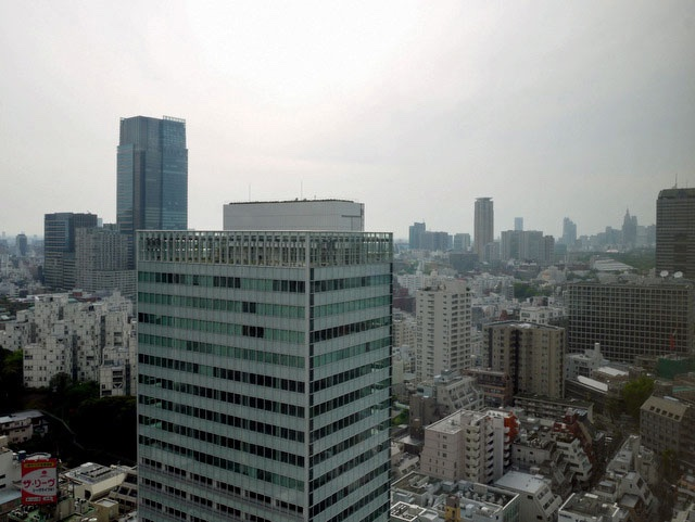 ANAインターコンチネンタル東京_眺望