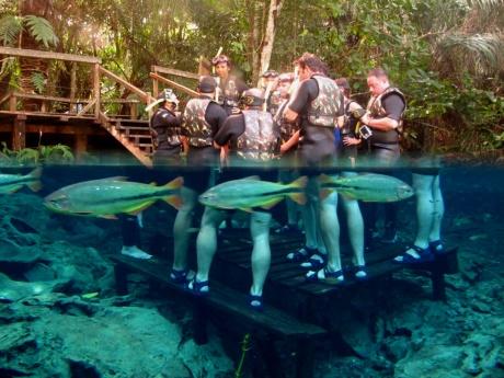 imagem de turistas dentro do lago