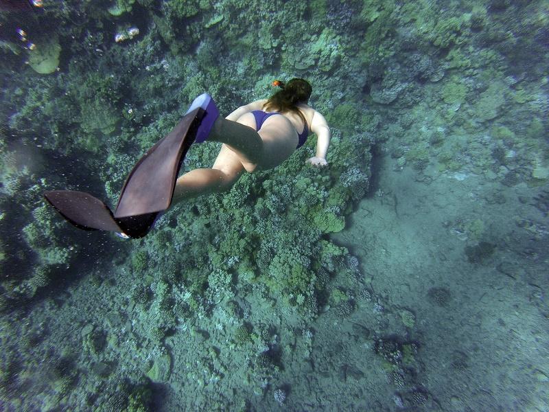 imagem-de-turista-praticando-mergulho