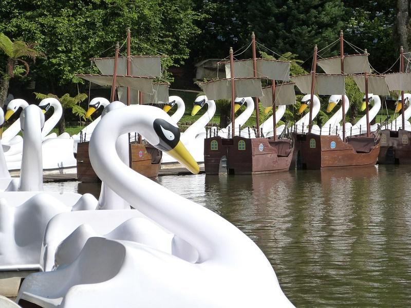 imagem-de-pedalinho-no-lago-negro