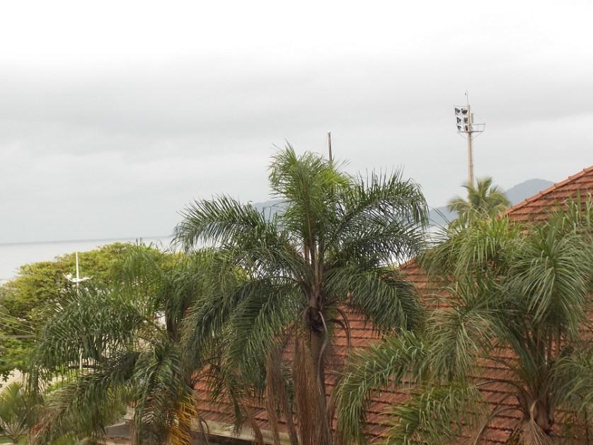 santos-a-cidade-da-vocacao-turistica-e-hospedeira-imagem-de-floresta