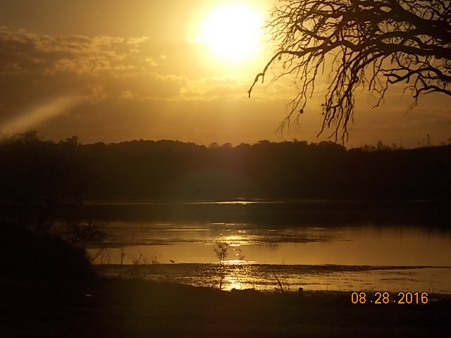 imagem-do-sol